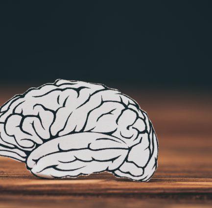 The Brain On Porn
