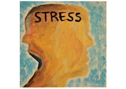 Distress - Hannah C.